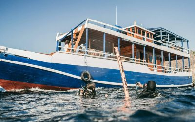 Day Trips in Komodo